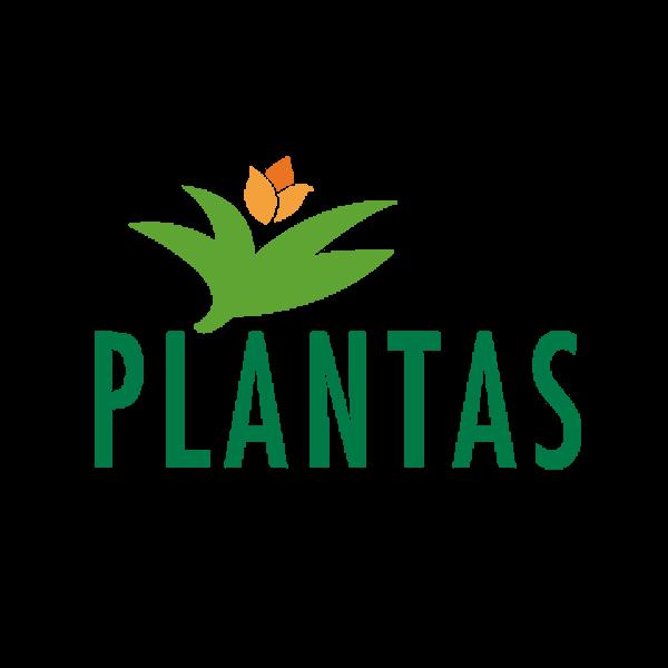 Plantas_EN